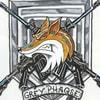 GreyPhaqse