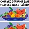 austere_po_kaifu_tv