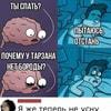 ruddy_novinkihd