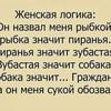 st1ngy_groupspr1kol