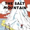 The_Salt_Mountain_2015
