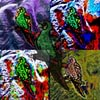 ParrotShirt
