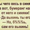 lettuce_nelaskova