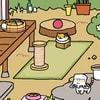 kitten_play_2016