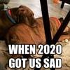 thin_dogloverssquad