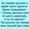 meaty_anecdotesru_2