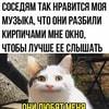 mute_raduga_smekha