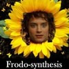Frodosynthesis_2015