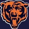 Bearsfan12345_2014