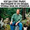 best_mem9chiks