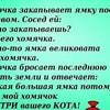 pure_veselaya_ufa