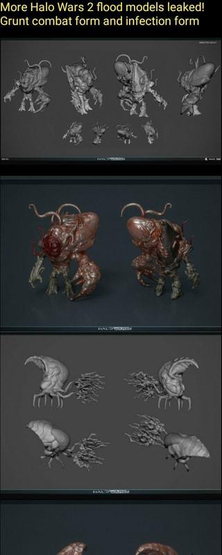 More Halo Wars 2 flood models leaked! Grunt combat form and