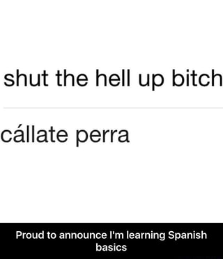 Shut The Hell Up Bitch Callate Perra Proud To Announce I M Learning Spanish Basics Proud To Announce I M Learning Spanish Basics Ifunny