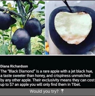 black diamond apple tibet