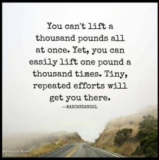 Image result for you can't lift a thousand pounds all at once