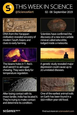 DNA from the Harappa Scientists have confirmed the