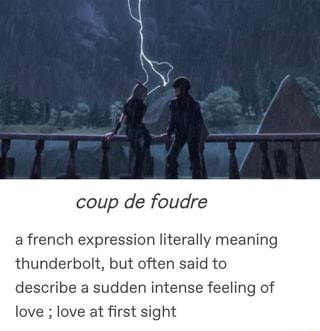 Coup de foudre a french expression literally meaning
