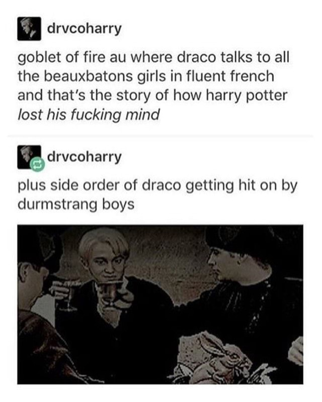 Goblet Of Fire Au Where Draco Talks To All The Beauxbatons Girls In Fluent French And That S The Story Of How Harry Potter Lost His Fucking Mind Drvcoharry Plus Side Order All to leave this year full of sadness because of a death. goblet of fire au where draco talks to