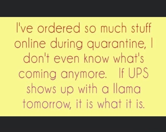I've ordered so much stuff online during quarantine, don't even know what's  coming anymore. If UPS shows up with a llama tomorrow, it is what it is. -  America's best pics and