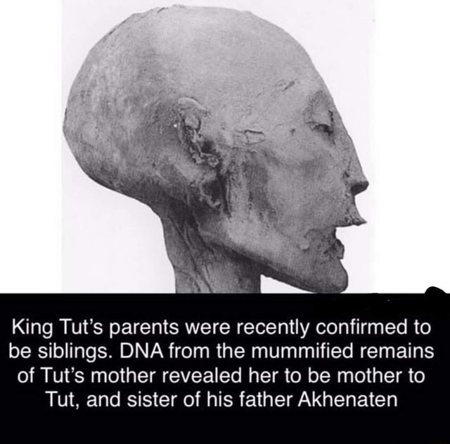 King Tut S Parents Were Recently Confirmed To Be Siblings Dna From The Mummified Remains Of Tut S Mother Revealed Her To Be Mother To Tut And Sister Of His Father Akhenaten Ifunny