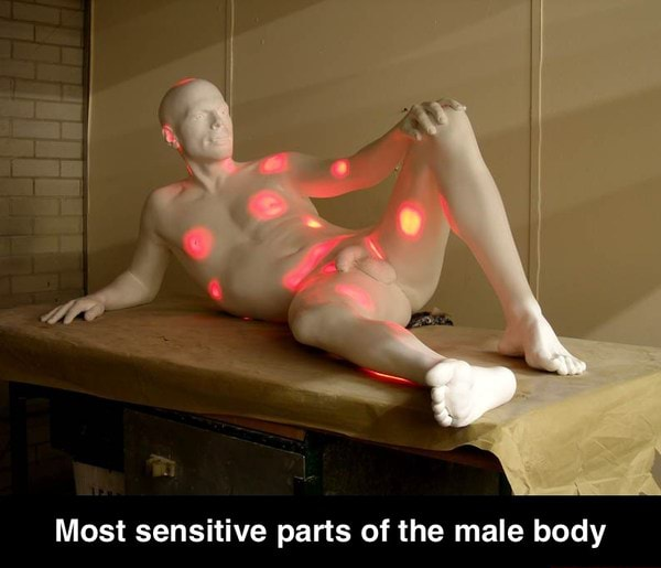 The body most sensitive male part of Erogenous Zones