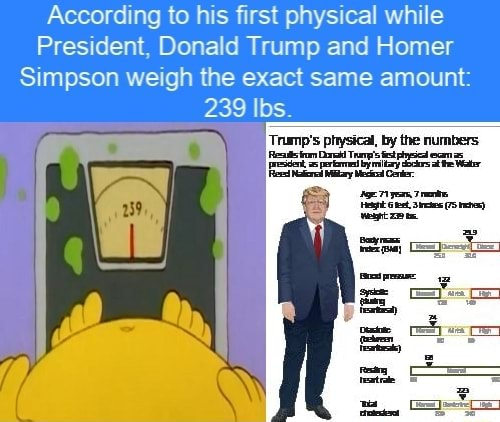 Homer Simpson Height
