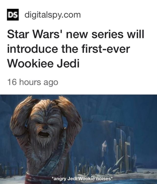 Star Wars New Series Will Introduce The First Ever Wookiee Jedi Ifunny This is our latest force relics project: introduce the first ever wookiee jedi
