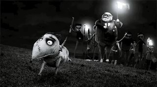Frankenweenie Memes Best Collection Of Funny Frankenweenie Pictures On Ifunny